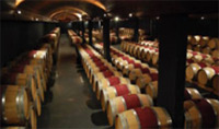 Enjoy a tour a Bordeaux; the world's top producer of wine.