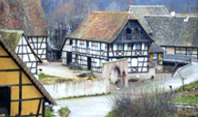 Be guided through the traditional Alsatian buildings of the Alsatian Eco-Museum including 70 authentic houses.