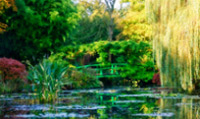 Tour Monet's garden in Giverny, France and view its flower and water garden.
